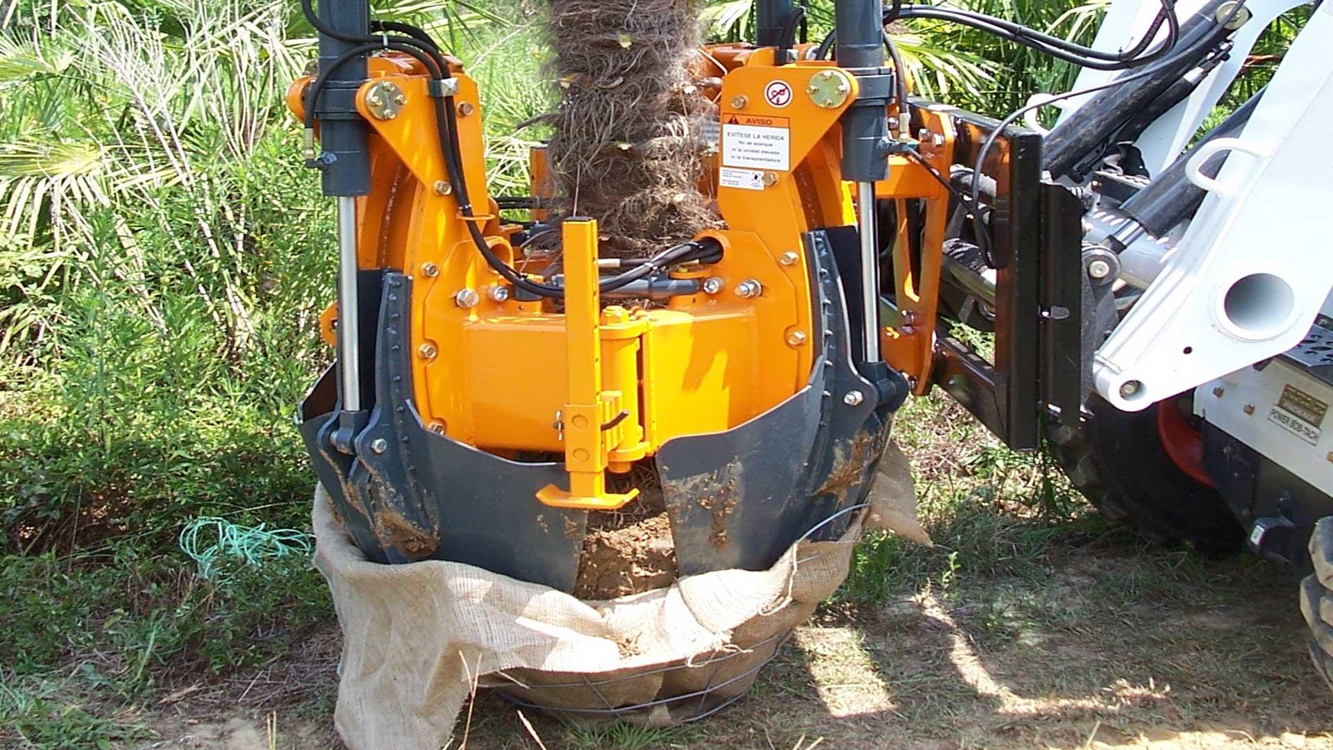 Optimum-1100-tree-spade